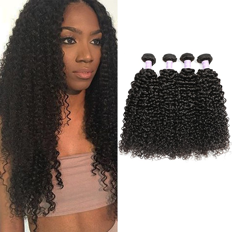 DSoar Malaysian best curly human hair weave bundles 4 PCS natural black